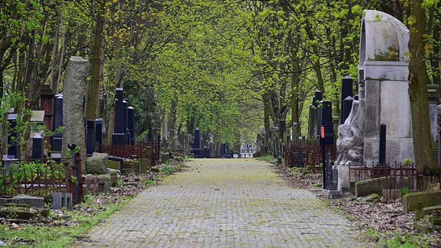 cmentarz zydowski na okopowej